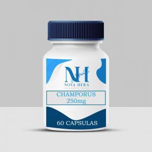 https://www.farmacianovahera.com.br/view/_upload/produto/45/miniD_1587231233champorus-v---jpeg.jpg